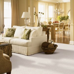 White Carpet in Living room | Thornton Flooring