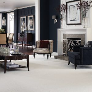 White Carpet flooring | Thornton Flooring