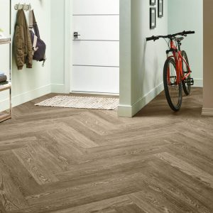 Bycycle on Vinyl flooring | Thornton Flooring