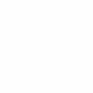Karastan Carpet | Thornton Flooring