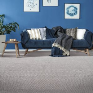 Blue couch on Carpet flooring | Thornton Flooring